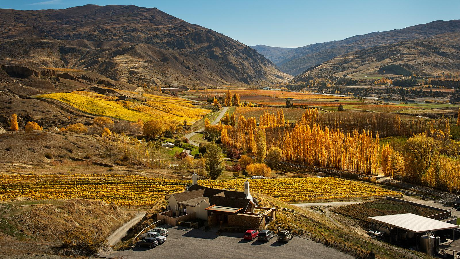Foley Family Wines Buys New Zealand's Mt. Difficulty