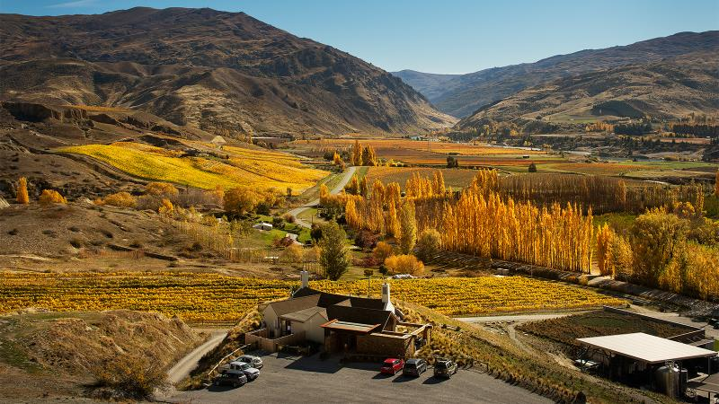 Mt. Difficulty's winery lies nestled in the hills of Central Otago on the South Island.