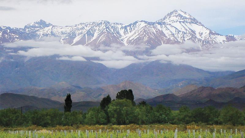 6 Fruit-Packed South American Reds
