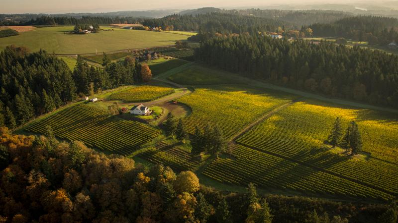 Le Cadeau, a pioneer in Willamette Valley, was founded in 1996.