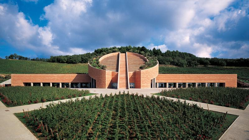 Petra has put a focus on wine hospitality at their modern, stylish winery in Tuscany in Italy.