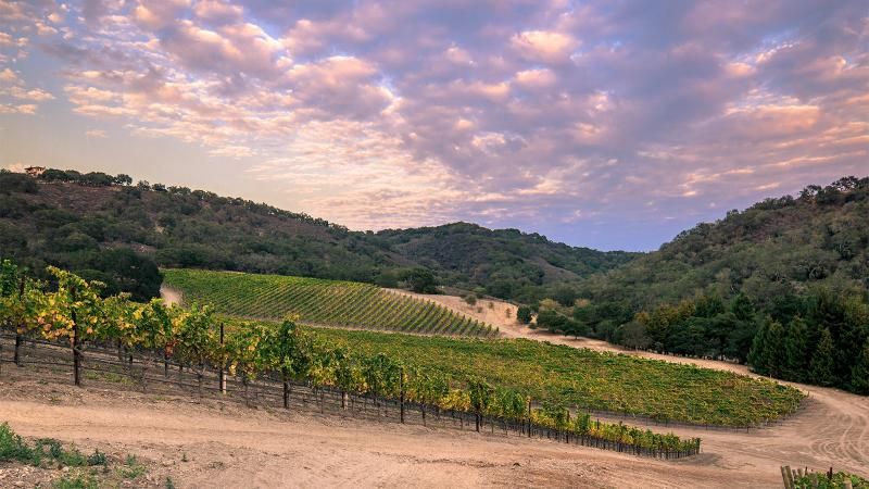 Talley makes wines from six vineyards in San Luis Obispo county.