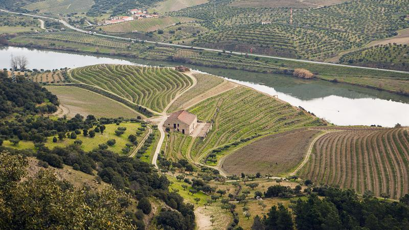 Quinta do Vale Meão was in <i>Wine Spectator</i>'s Top 10 of 2014.