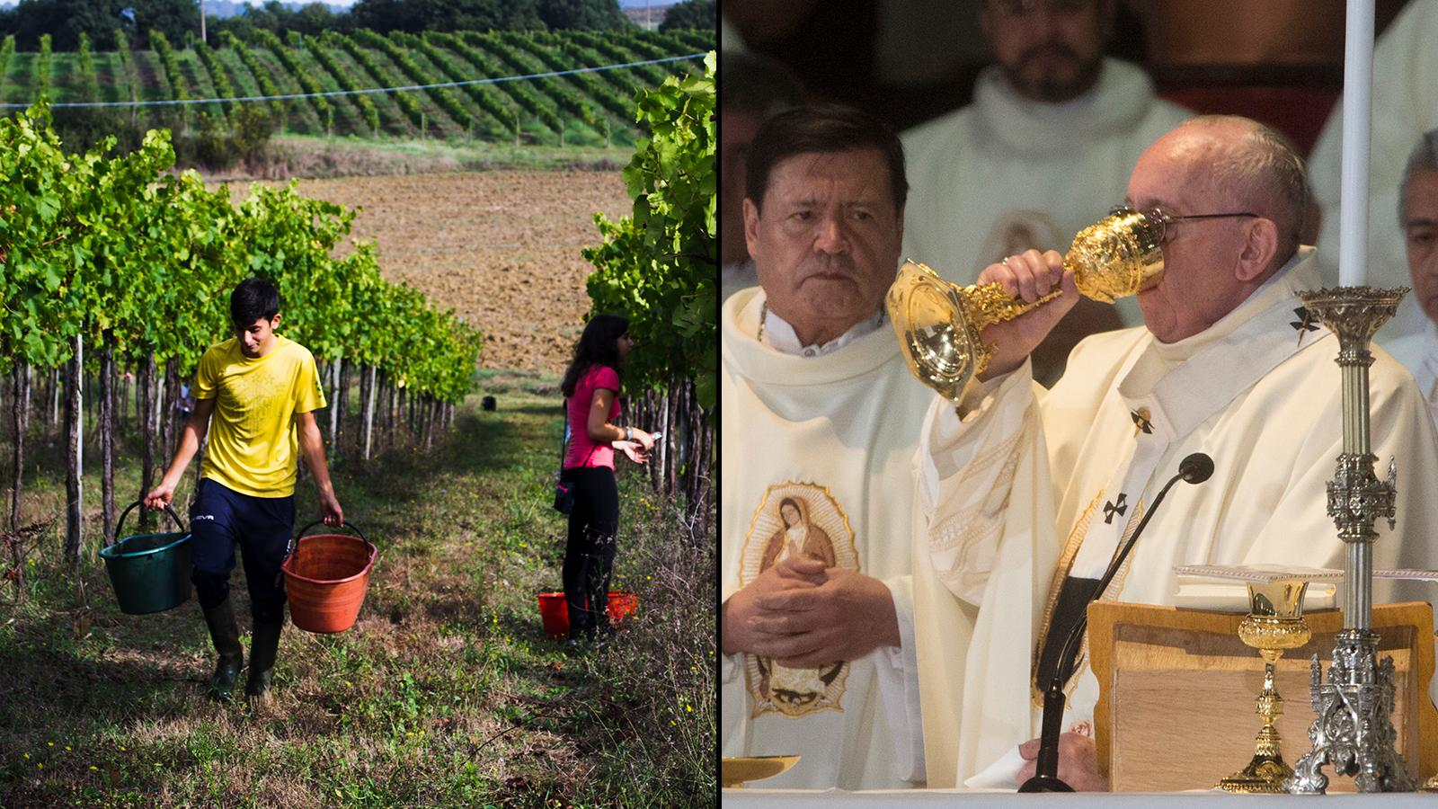 Pope Francis' Wine Prayers Answered