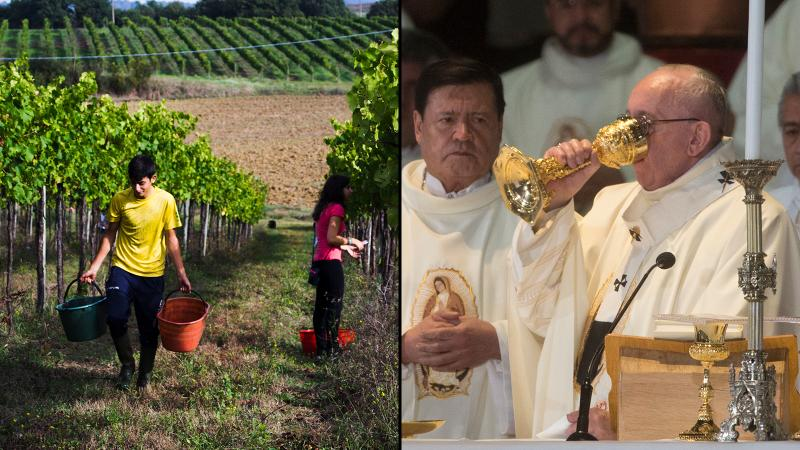 Pope Francis Prayed for 'Natural' Wine, and Lo, a Winery Answered