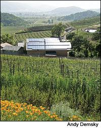 Solar panels, like these on the roof of a Shafer Vineyards building, have proved a tempting target to thieves in Napa Valley.