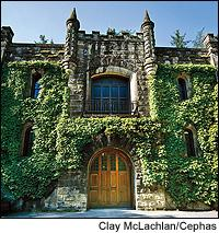 Chateau Montelena, once one of Napa's most esteemed wineries, will require work in the vineyards and the cellar to regain its past acclaim.