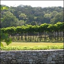 texas hill country texas wine country travel dining and travel