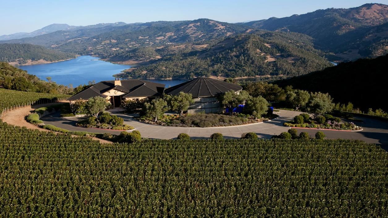 Colgin Blazes the Boutique Cabernet Trail