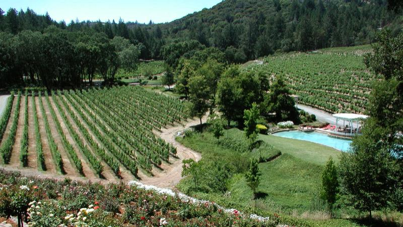 The Diamond Creek School of Cabernet
