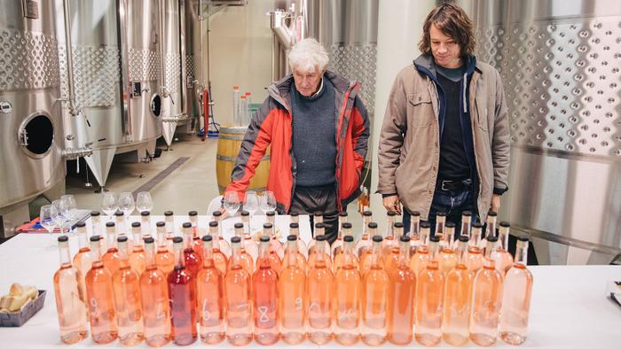 9 Gateway Rosés from Provence