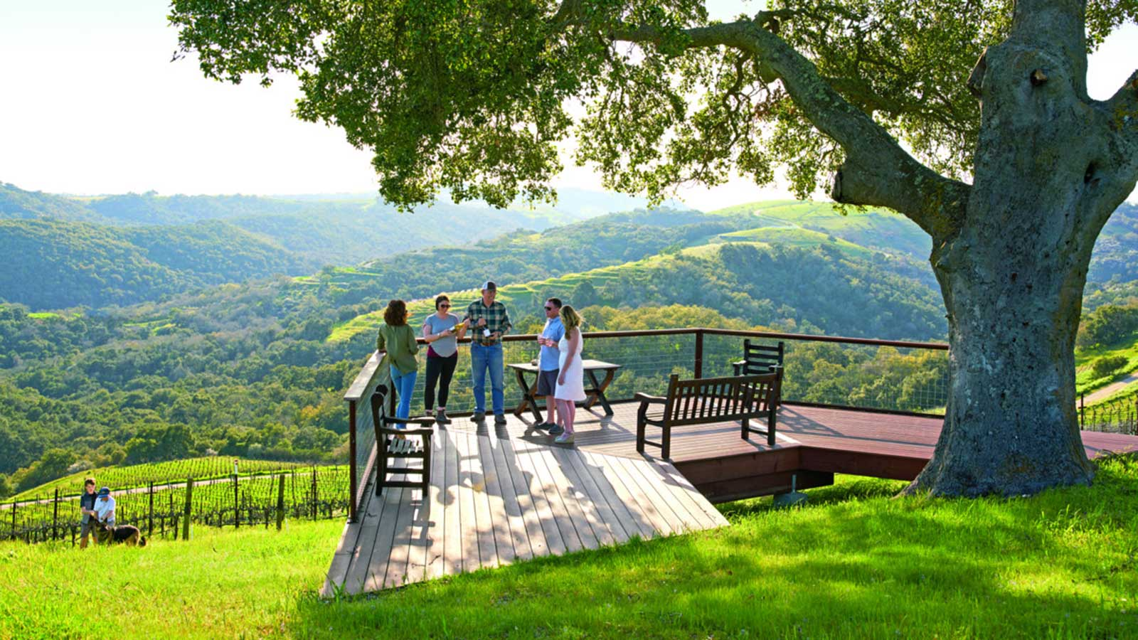 A group of tasters stand on a patio with a panoramic outlook in the background