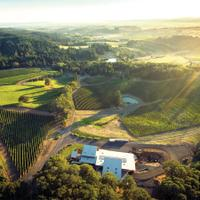 Alexana's winery is in the Dundee Hills subappellation of Willamette Valley.