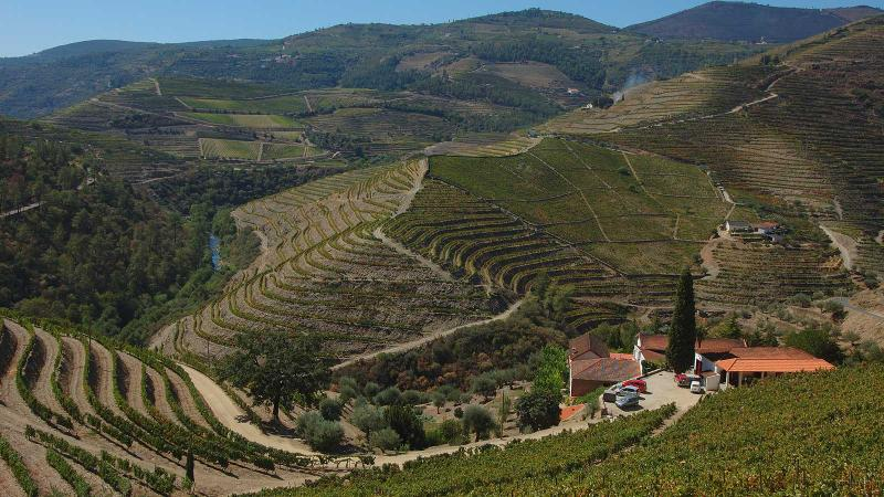 Quinta do Passadouro enjoys a prime spot above the Pinhão river in the Douro region.