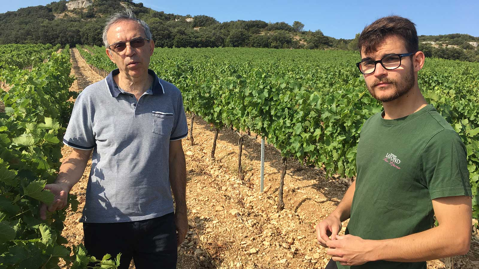 Pascal Lafond and his son François stand in a sunny vineyard in the Vestides section, with light-colored limestone soil and hills in the background.