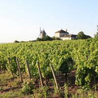 Château du Moulin-à-Vent is a quality leader in the appellation it's named after.