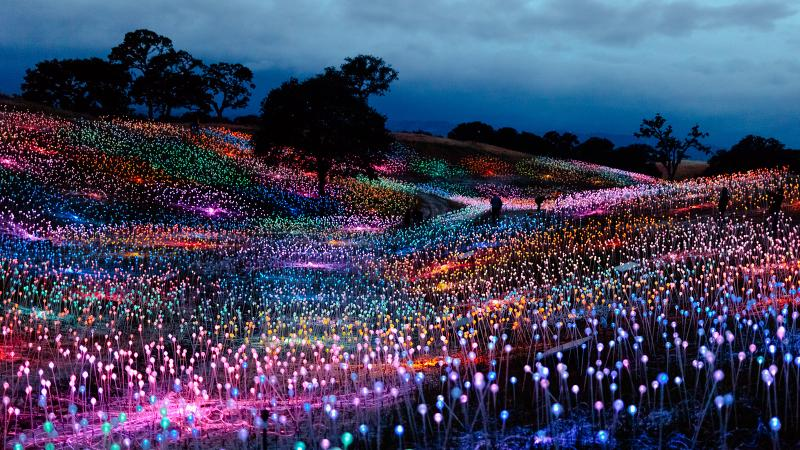 Paso Glows with 60,000-Bulb 'Field of Light'; Champagne Corks Blast at Supersonic Jet Power