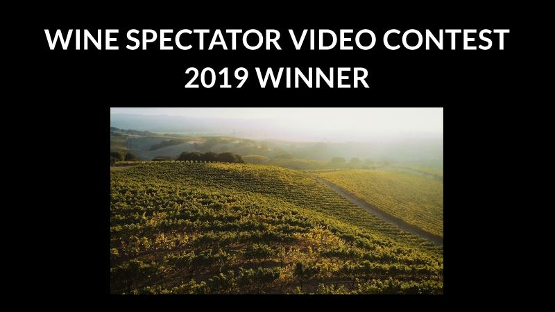 Video Contest 2019 results