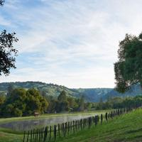 Balo Vineyards has been a popular spot for wine-loving visitors to Anderson Valley.