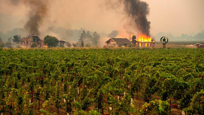 An outbuilding at a vineyard near Geyserville goes up in flames. Wildfires will largely bypass vines, burning posts and nearby vegetation.