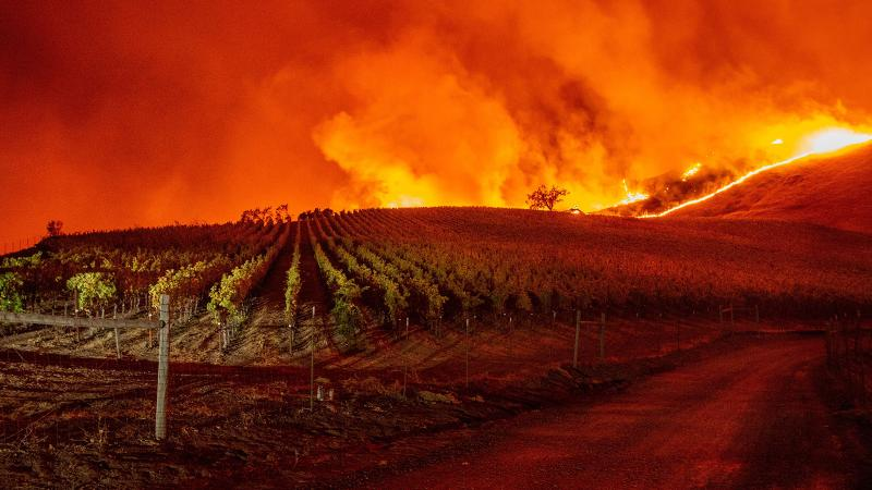 The Kincade fire threatens a vineyard in the hills above Geyserville, Calif.