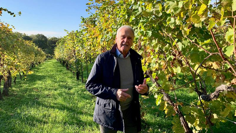 Primo Franco walks his Col del Vent vineyard near the town of Valdobbiadene.