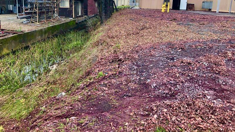 Spill at Rodney Strong Winery Sends More than 46,000 Gallons of Cabernet into Russian River
