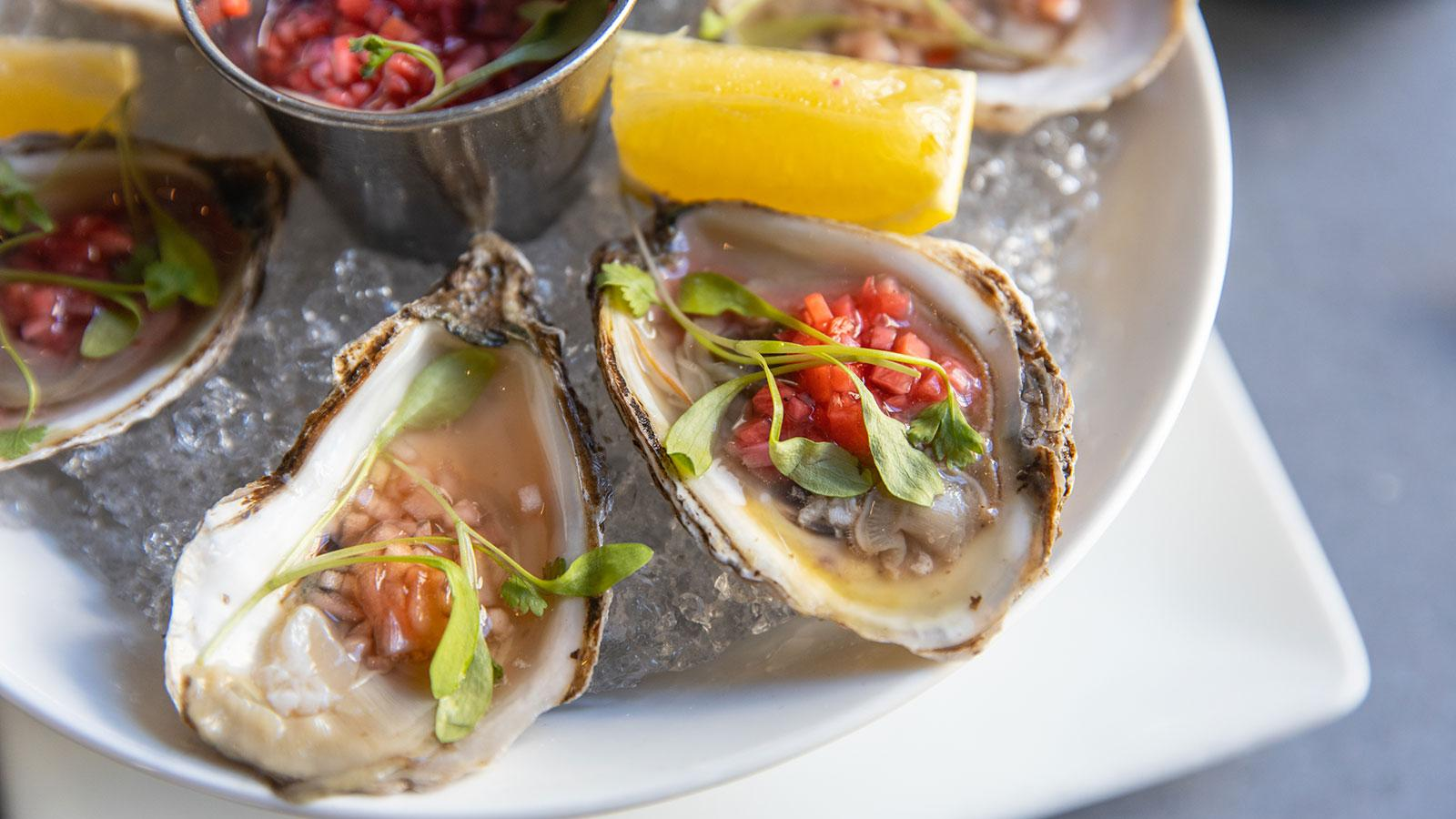 Oysters on ice at AVA Social