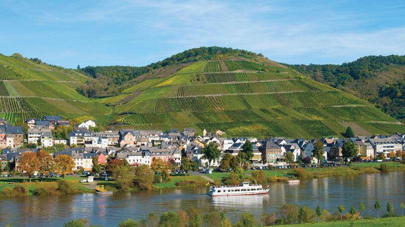 German Wines Continue to Shine
