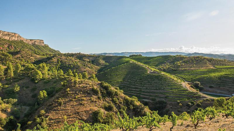 A Ramble Through Priorat