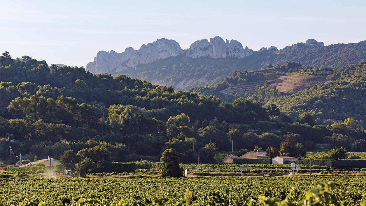 Rhône Valley Alphabetical Listing