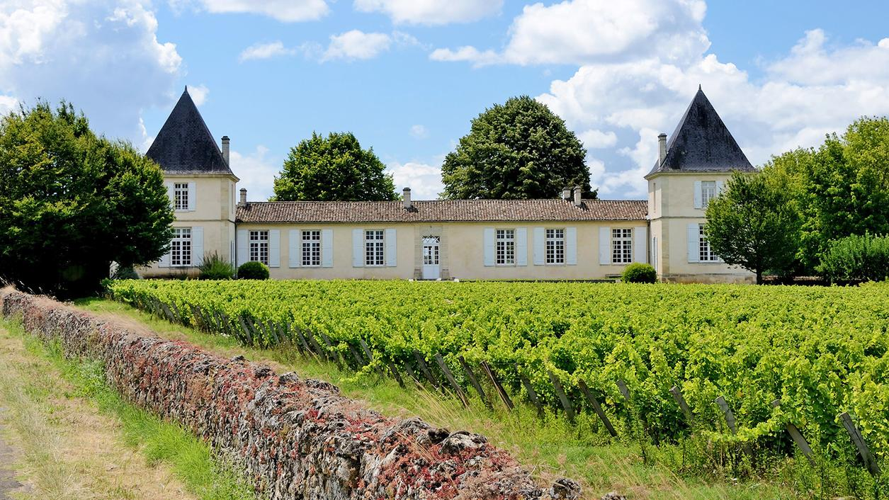 Bordeaux's Liquid Gold Country
