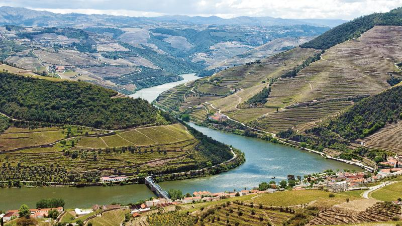 The terraced vineyards of the Douro Valley.
