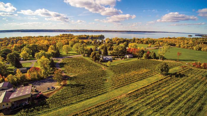 A Guiding Hand to the Finger Lakes