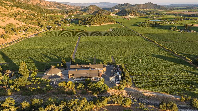 Rocky soils and cooling breezes make Duckhorn's Rector Creek Vineyard one of Napa's top sites for Merlot, yielding a classic-rated version in 2016.