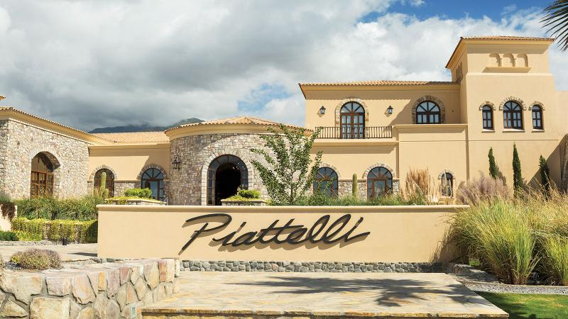 Piattelli, located in the Cafayate Valley, is a consistent source of values from Argentina's leading grapes.